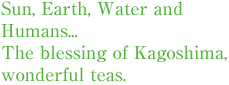 Sun, Earth, Water and Humans... The blessing of Kagoshima, wonderful teas.
